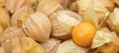 Zitrusfrüchte & Exoten